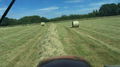 View from the Tractor